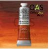 BURNT SIENNA Winsor & Newton Winton Oil Colours : (No.074) 37ml